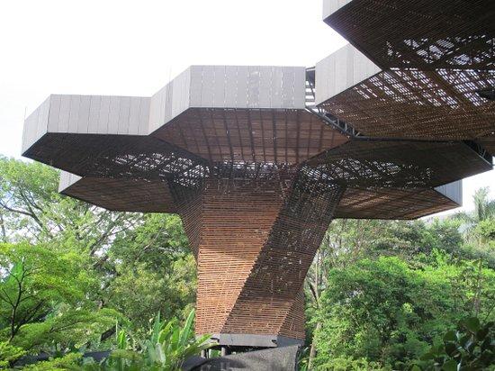 Jardin Botanico de Medellin: Esta es la estructura del Orquidiorama