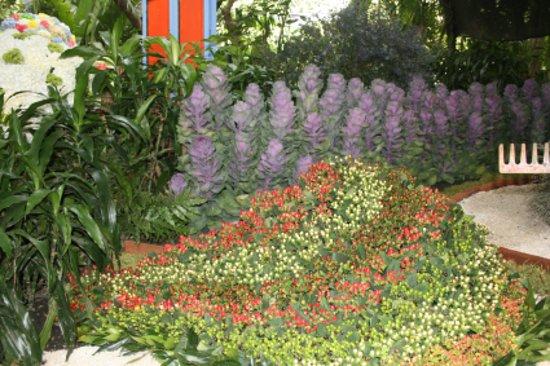 Jardin Botanico de Medellin: Así exponemos nuestras flores