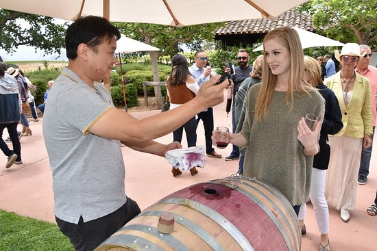 """Gainey Vineyard: An assistant Gainey Winery Manager pouring samples with a Cask """"Thief"""""""