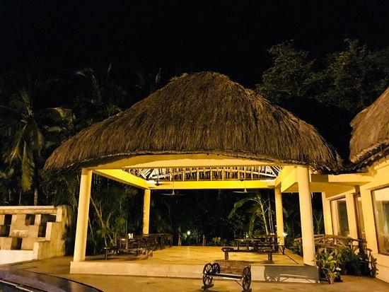 Vedic Village Spa Resort: Bar adjoining the swimming pool
