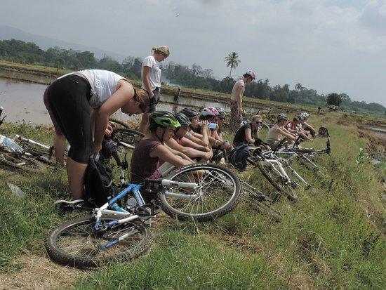 Kili Bike Adventures照片