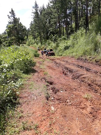 ATV Quad Bike Adventure Tour to Remote Village and School (Departs Nadi): Just a few water ruts to navigate....I'm too chicken so Abel takes the reins