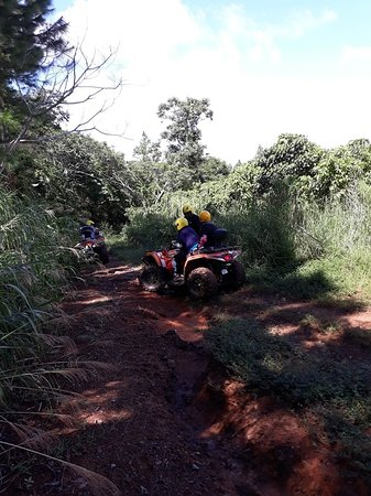 ATV Quad Bike Adventure Tour to Remote Village and School (Departs Nadi): great gouges in the road caused by the rain during the cyclones