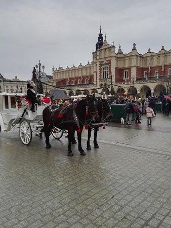 โคลทฮอลล์: Sukiennice - Kraków