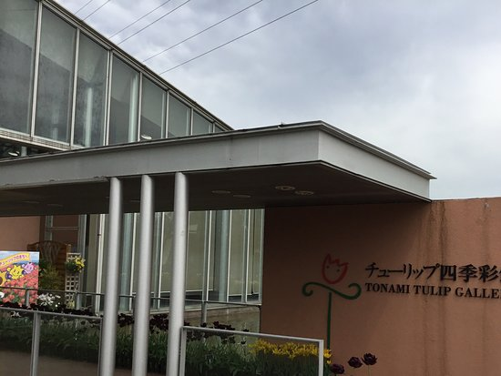 Tonami Tulip Park: Gallery