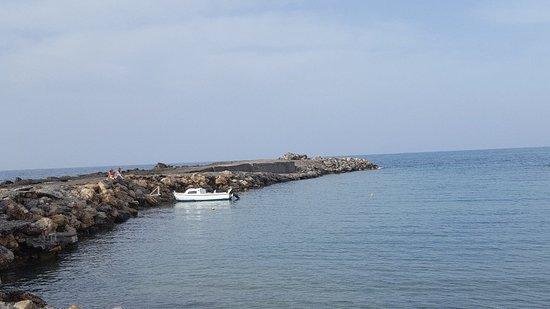 Foto de Marina Beach