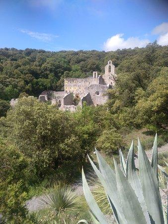 Jardin botanico de Santa Catalina: Vistas de las ruinas del monasterio