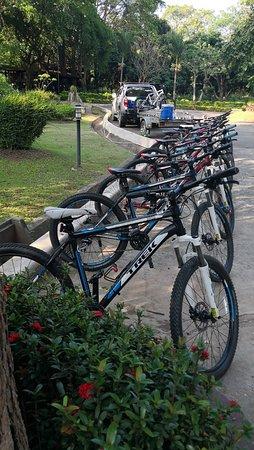 Chiang Mai Adventure Tour: The bikes