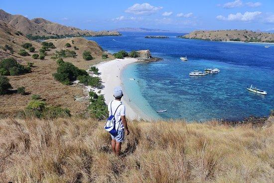 Alexandra Komodo Tour: Pink Beach Hill