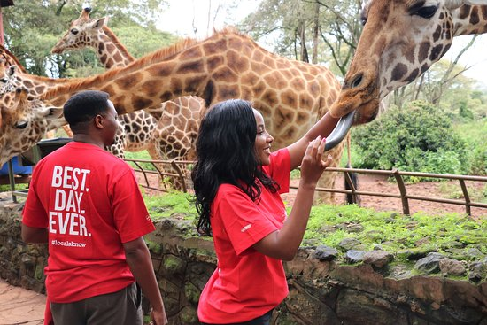 Nairobi Urban Adventures