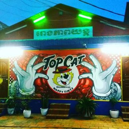 Top Cat Bar & Lounges: Amazing new artwork...