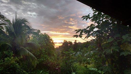 Piro Jungla Conservation Ecotours: amanecer
