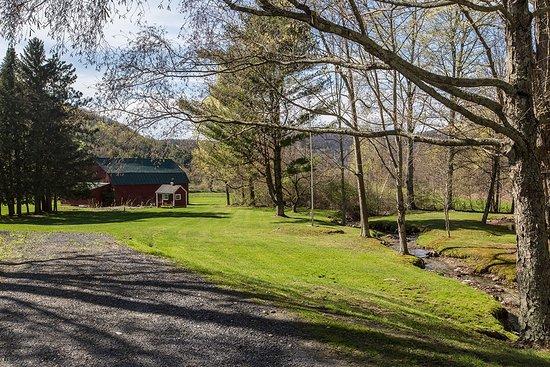 Cambridge, NY: Christmas tree farm grounds & rustic barn