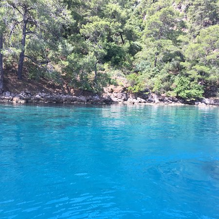 Ekinim1 -  Daily Boat Trips: İt was good day
