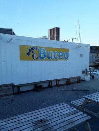 Bubbles Dive: con estación de carga a pie de barcos