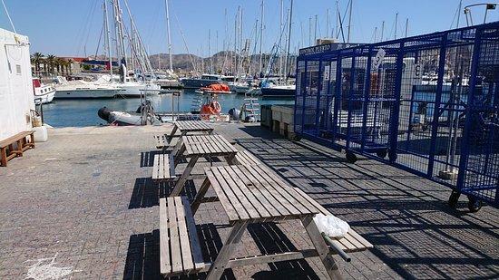 Bubbles Dive: zona de endulzado apie de barco con secadero y guarda de equipos para grupos en jaulas privadas