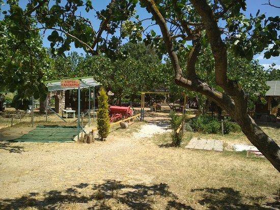 Πάρκο Δεινοσαύρων