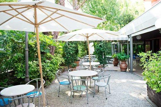 Hotel Villa Rosa: Giardino