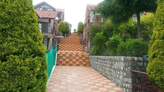 Gopalpur, India: 20170525_144912_Burst01_large.jpg