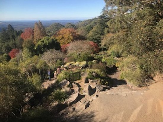 The Blue Mountains Botanic Garden: A view from the restaurant looking out over the railing.