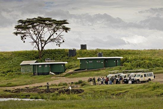 Predator Safari -4 Days: Ngoitoktok Picnic Site in the Ngorongoro Crater