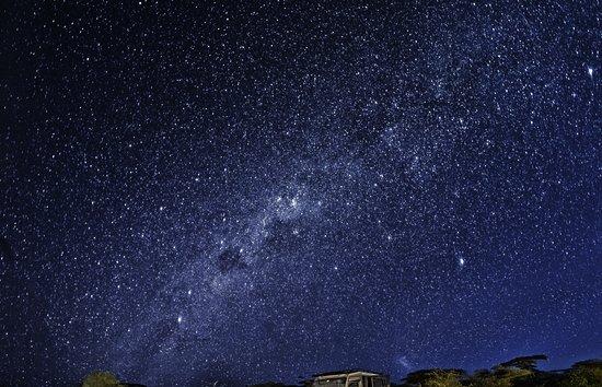 Predator Safari -4 Days: Stars over Lake Masek