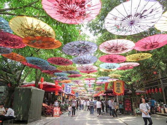 Anren Ancient Town: near 刘文辉旧居陈列馆