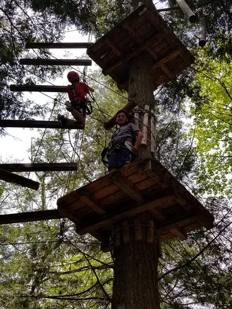 Aerial Adventure Park: So many creative climbs and challenges
