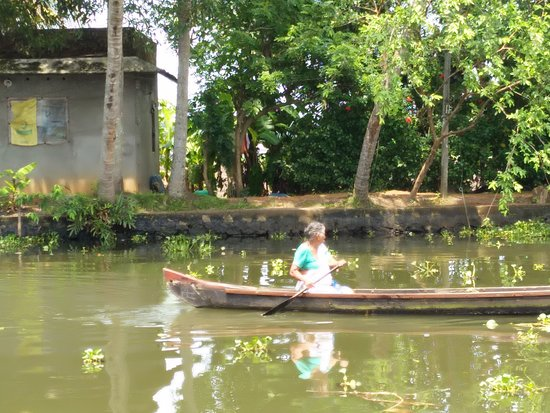 "Alleppey Houseboats - Day Tours: An old lady ""driving"" her personal boat for travel"