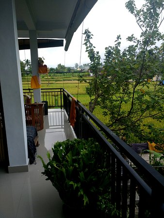 Molecha Guest House: View from the balcony