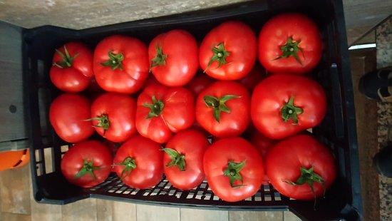 Tapería los granainos: Tomates