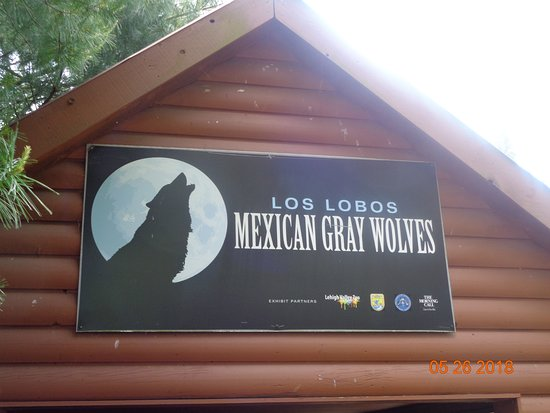 Lehigh Valley Zoo: Mexican Gray Wolf sign