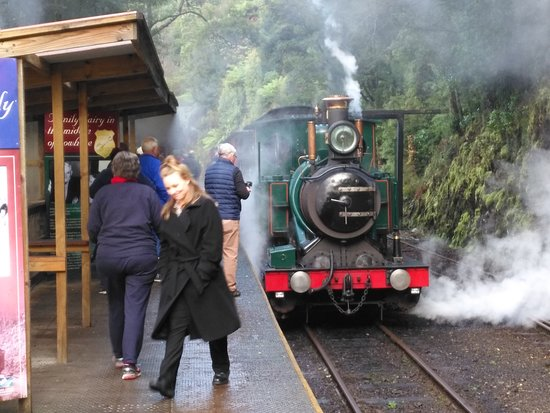 Queenstown, أستراليا: Train stopped at station.