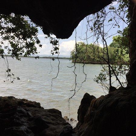 Los Haitises National Park: Soy dominicana, y este lugar me encanto por la belleza del trayecto en la barca:  los manglares,