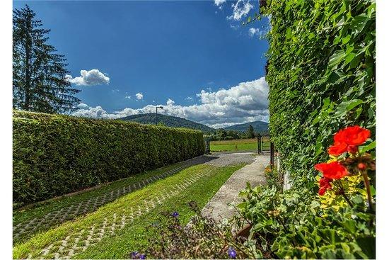 Villa Martin照片