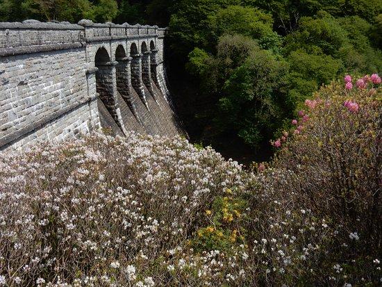 The dam at Burrator reservoir.