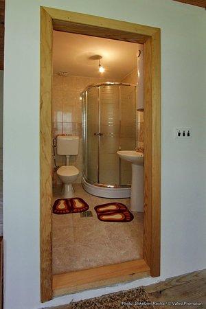 Gjakova, Kosovo: Bathroom in the private room.