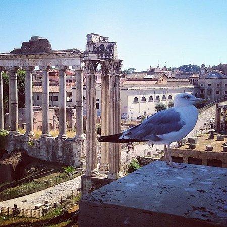 Tour Guide Erik: Ancient Rome, #tour #civitavecchia #portofrome #rome