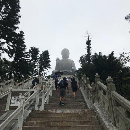 Po Lin (Precious Lotus) Monastery: photo4.jpg