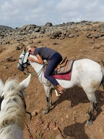 The Gold Mine Ranch: Horse riding track by sea