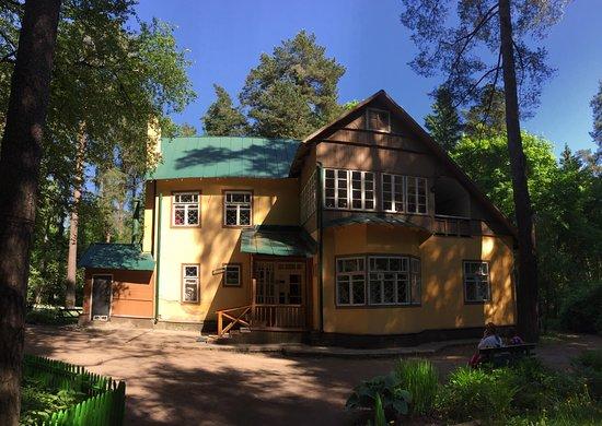 K. Chukovskiy's House Museum