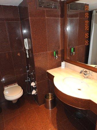 White Meadows - Manali: Bathroom