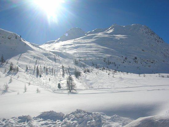 Urlaubsregion Defereggental - Tourismusinformtion St. Jakob: Skitouren und Langlaufen Staller Sattel