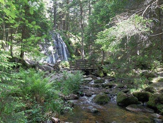 Le Tholy, Francja: cascade