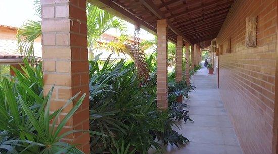 Palmier Hotel: Natureza