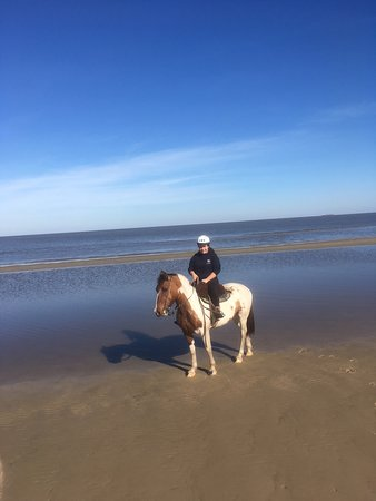 Colonia Horseriding: Love this horse