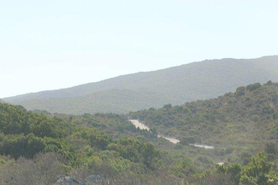 Saleccia Off Road照片