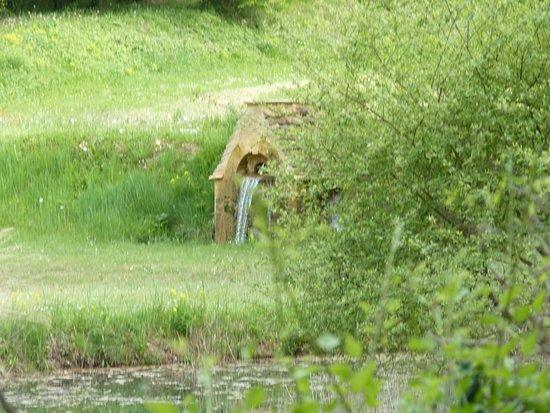 Marcillac-Saint-Quentin, France:  Quad en Foret de Lasserre