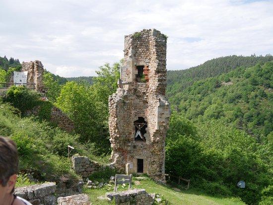 Château de Rochebaron: une partie du chateau