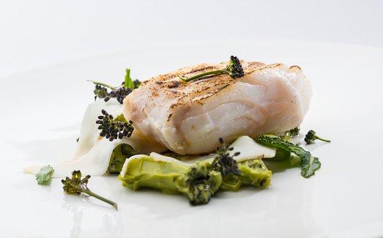Torridon, UK: North sea cod